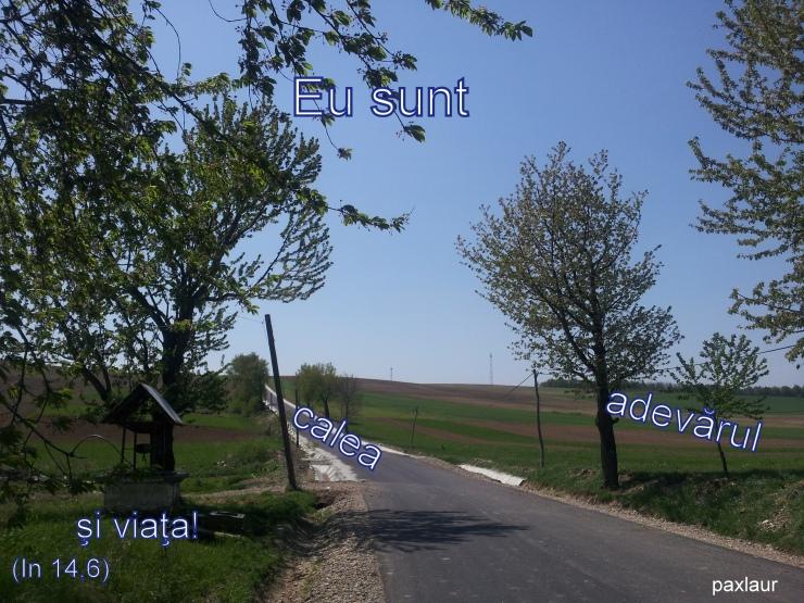 Calea_adevarul_viata
