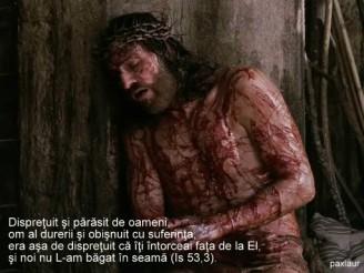 Isus parasit