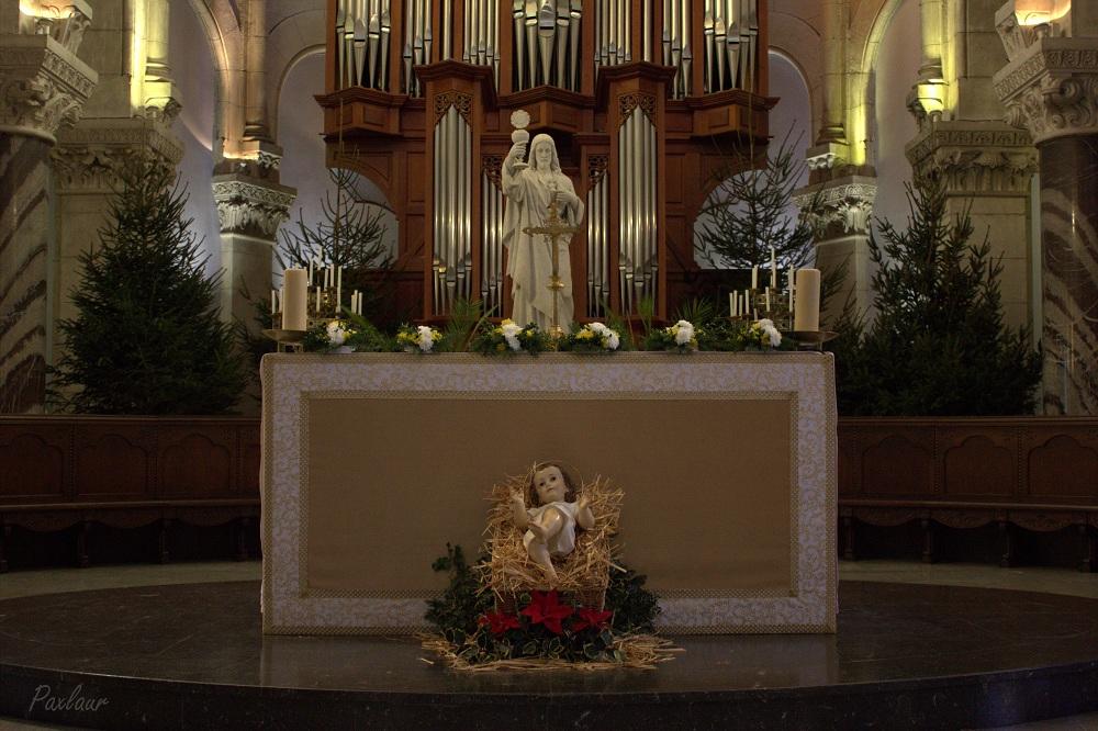 7_Biserica Parohiala Preasfanta Inima_Lourdes