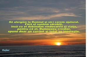 16 ianuarie 2014 Dumnezeu vindeca salveaza