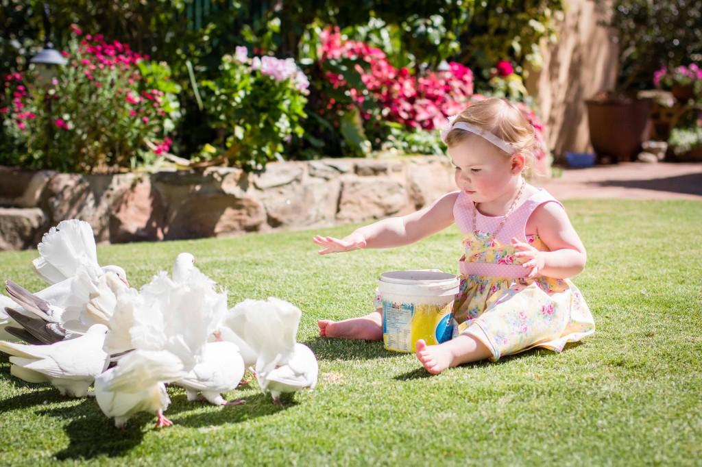 Puritatea copiilor si simplitatea porumbeilor