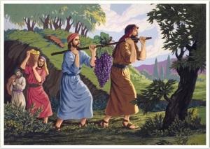 biblica1d