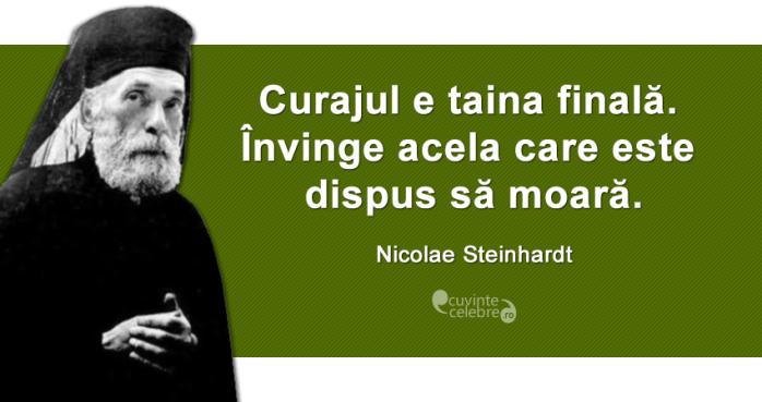 Curaj Nicolae steinhardt