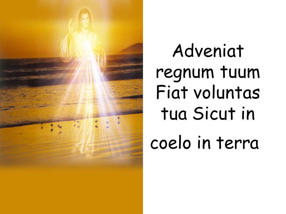 Adveniat regnum tuum Fiat voluntas tua Sicut in coelo in terra