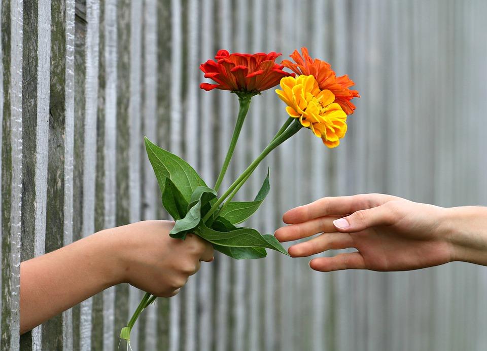 fericire daruire generozitate