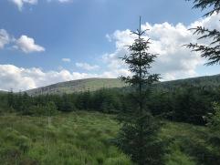 Glendalough Irlanda 2018 10