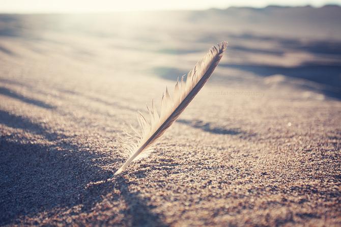 providenta scris nisip