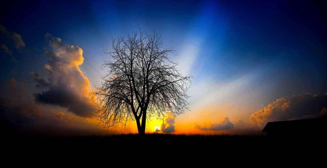 Dumnezeu este lumina