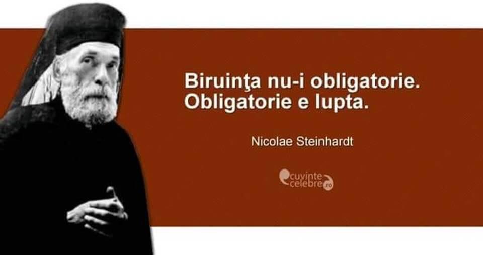 Lupta e obligatorie_N Steinhardt