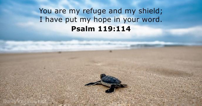 Speranta mea este Domnul