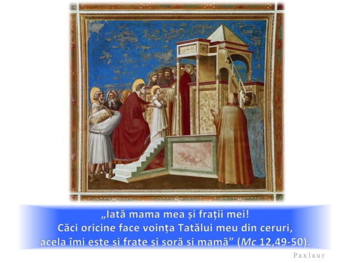 Giotto, Aducerea Fecioarei Maria în Templul din Ierusalim