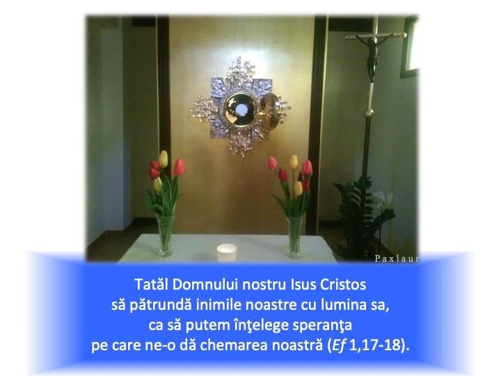 20 februarie adoratie lumina lui cristos speranta lumii