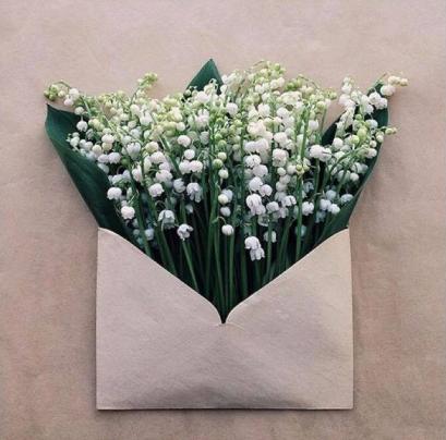 primavara flori lacrimioare